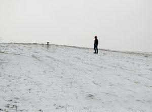Nail in Snow, 2017